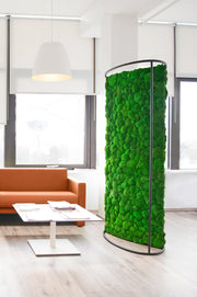 Plant and Moss Dividers
