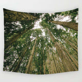 Nature decor, Wall Decor, Calm Tapestry, Beautiful Natural Decor, Nature inspired Design, nature wallpaper, floral wallpaper, forest wallpaper, mural wallpaper, nature canvas, canvas prints, nature tapestries, glass terrariums, home decor, Forest Homes