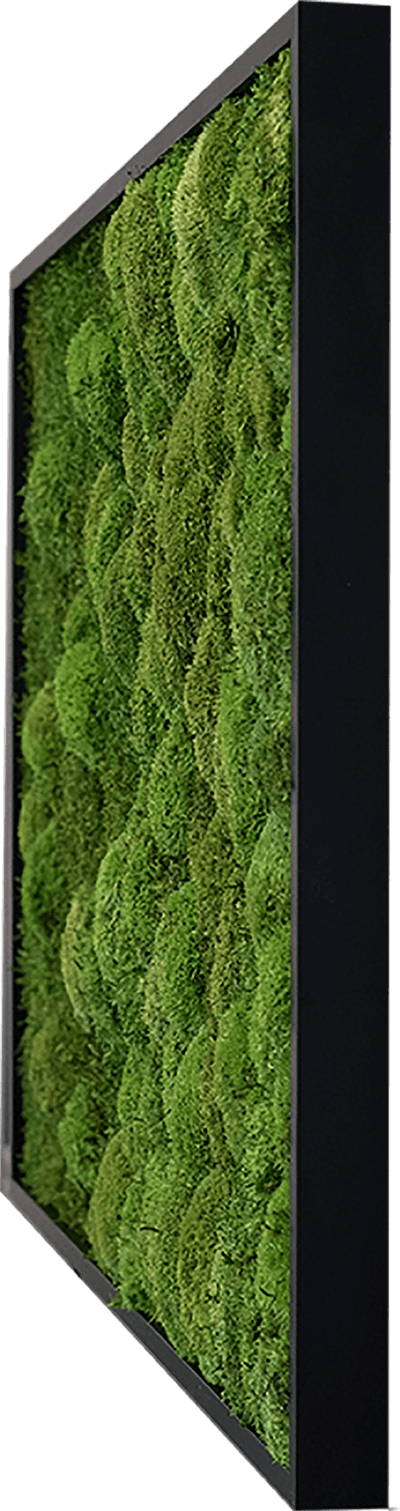 nature Wall Decor, Merging Moss Green Wall Art, beautiful natural decor, nature inspired designs, best home decor, Forest Homes