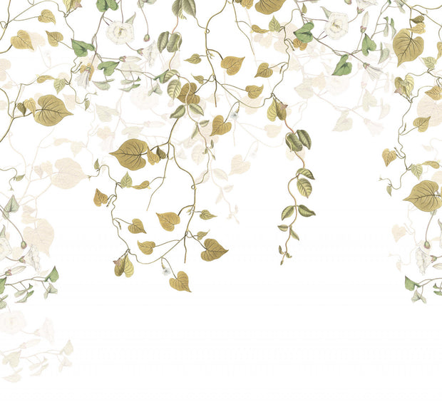Modern Ivy Mural Wallpaper