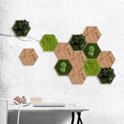 nature Wall Decor, Forest Moss and Cork Hexagons (Set of 9 Moss Panels), beautiful natural decor, nature inspired designs, best home decor, Forest Homes