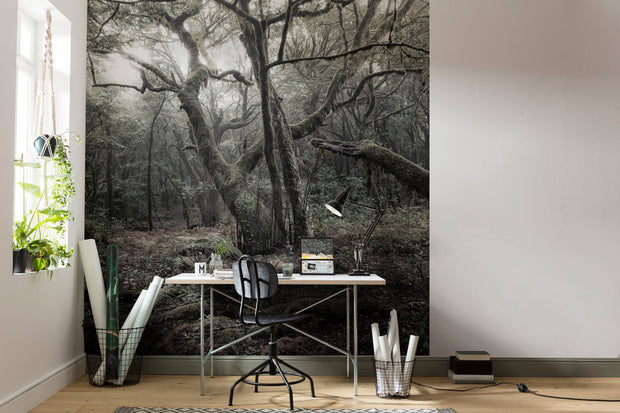 nature Wall Decor, Mystic Tree Mural Wallpaper, beautiful natural decor, nature inspired designs, best home decor, Forest Homes
