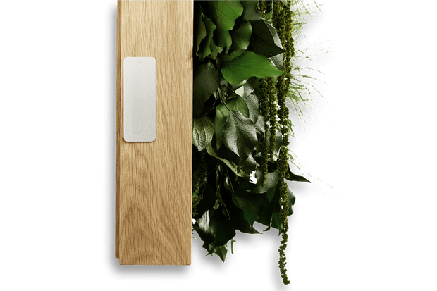 nature Sound Effects, Taim In Wall Mount Speaker, beautiful natural decor, nature inspired designs, best home decor, Forest Homes