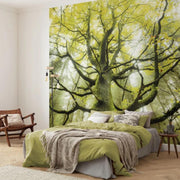 nature Wall Decor, Sun Climb Mural Wallpaper, beautiful natural decor, nature inspired designs, best home decor, Forest Homes