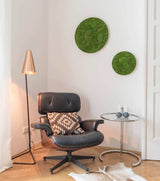 Set of 2 Circle Decorative Moss for living room