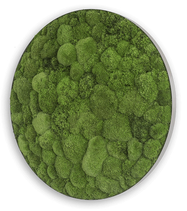 nature Wall Decor, Green Circle Decorative Moss Wall Art, beautiful natural decor, nature inspired designs, best home decor, Forest Homes