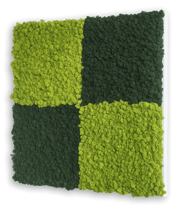 nature Wall Decor, Tundra Square Moss Wall Art, beautiful natural decor, nature inspired designs, best home decor, Forest Homes