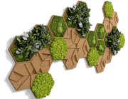 nature Wall Decor, Moss and Cork Hexagons (Set of 26 Moss Panel), beautiful natural decor, nature inspired designs, best home decor, Forest Homes