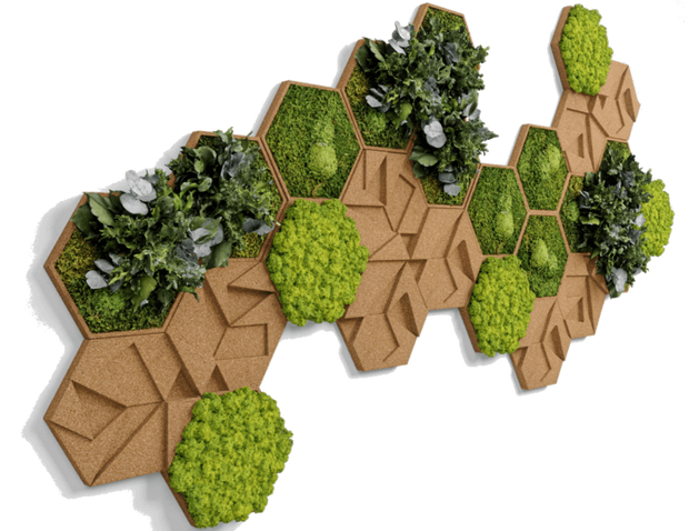 nature Wall Decor, Jungle Plant Hexagons (Set of 6 Plant Panel), beautiful natural decor, nature inspired designs, best home decor, Forest Homes