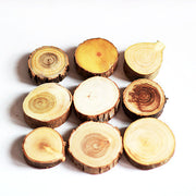nature Wall Decor, Trees of This Time Magnets (Set of 9), beautiful natural decor, nature inspired designs, best home decor, Forest Homes