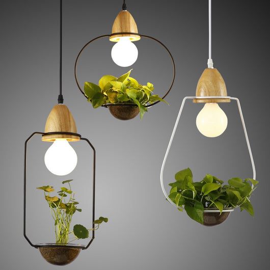 Nature decor, Lighting, Sedum Hanging Lights, Beautiful Natural Decor, Nature inspired Design, home decor, Forest Homes