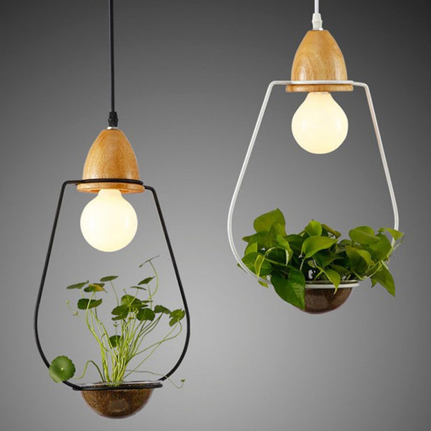 nature Lighting, Sedum Hanging Lights, beautiful natural decor, nature inspired designs, best home decor, Forest Homes