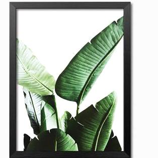 Emerald Canvas Prints, Beautiful, unique Wall Decor, Forest Homes, Home Decor, Natural Decor, Nature inspired Design for Wellbeing