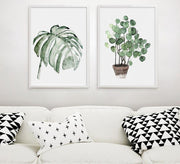 nature Wall Decor, Monstera Canvas Prints, beautiful natural decor, nature inspired designs, best home decor, Forest Homes