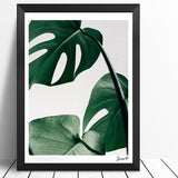 Nature inspired decor, Wall Decor, Monstera Canvas Prints (1 or Set of 2), Beautiful Natural Decor, Nature Designs, home decor, Forest Homes