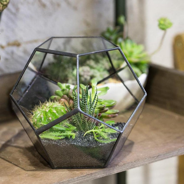 nature Home Flora, Black Leaf Glass Terrarium, beautiful natural decor, nature inspired designs, best home decor, Forest Homes