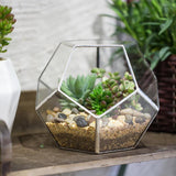 Nature inspired decor, Home Flora, Silver Leaf Glass Terrarium, Beautiful Natural Decor, Nature Designs, home decor, Forest Homes