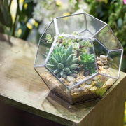 nature Home Flora, Silver Leaf Glass Terrarium, beautiful natural decor, nature inspired designs, best home decor, Forest Homes