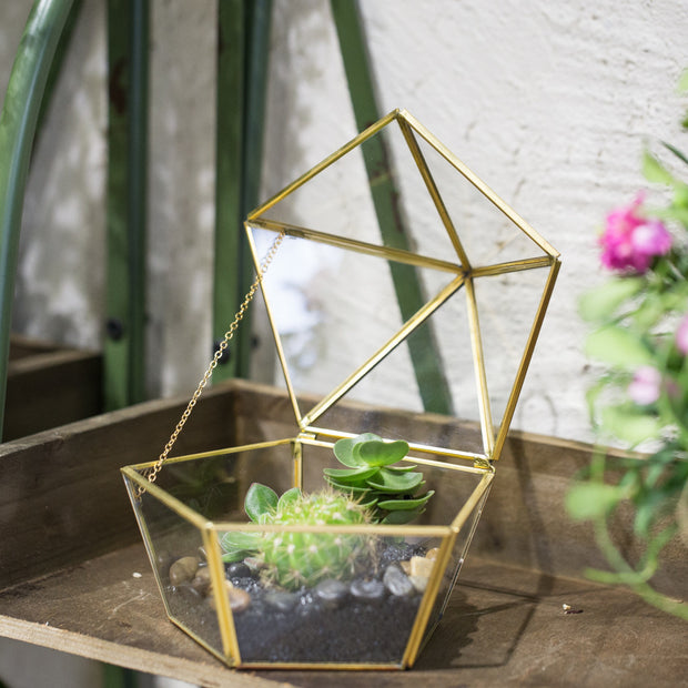 nature Home Flora, Golden Nature Terrarium, beautiful natural decor, nature inspired designs, best home decor, Forest Homes