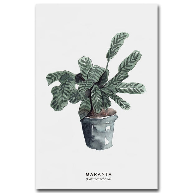 nature Wall Decor, Maranta Amazon Canvas, beautiful natural decor, nature inspired designs, best home decor, Forest Homes