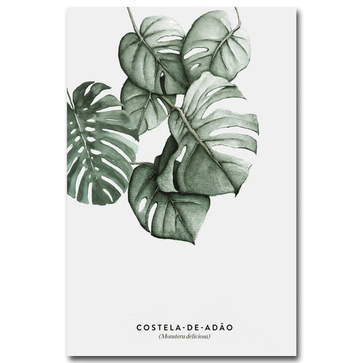 Costelas Amazon Canvas