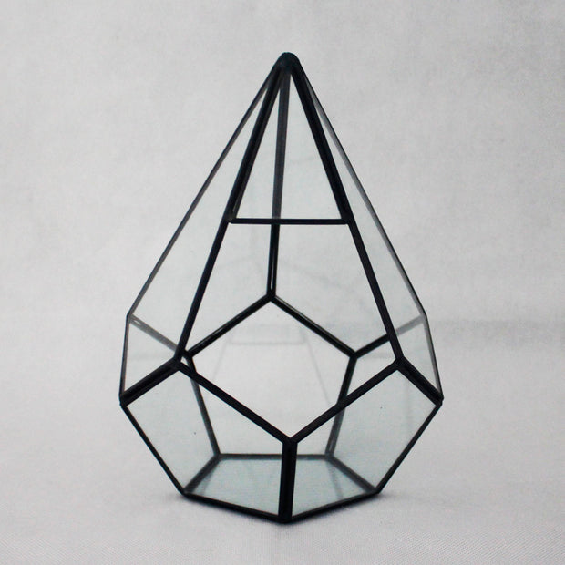 nature Home Flora, Penta Geometric Terrarium, beautiful natural decor, nature inspired designs, best home decor, Forest Homes