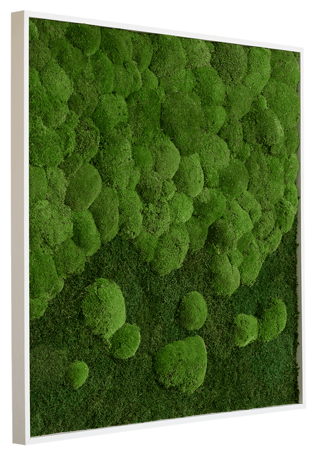 nature Wall Decor, Merging Square Moss Wall Art, beautiful natural decor, nature inspired designs, best home decor, Forest Homes