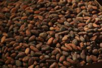 Cacao Aromes Noires