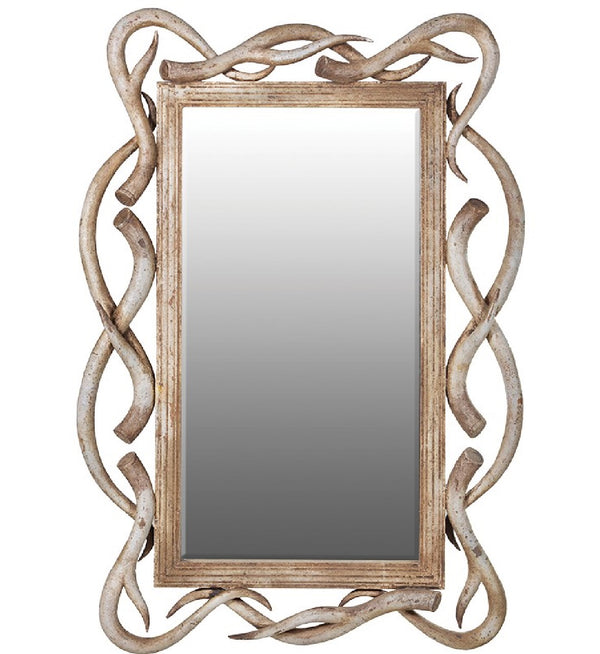 mirror with antlers, large mirror