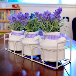 Lavender Pots Iron basket Windowsill Decoration Milk Churn