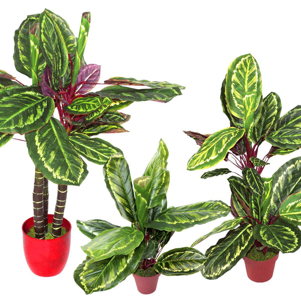 Artificial Plant Synthetic Plastic Calathea Veitchiane Fake Variegated Wide Leaf