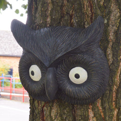 Owl Tree Face: Tawny / Barn Owl Hanging Garden Decoration Ornament - Hole For Mounting on Trees / Fences