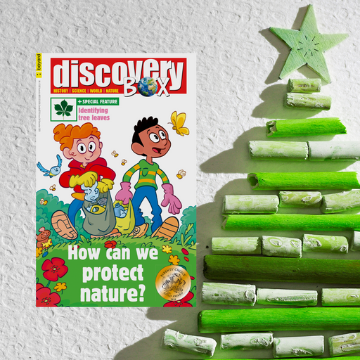 DiscoveryBox Christmas Subscription