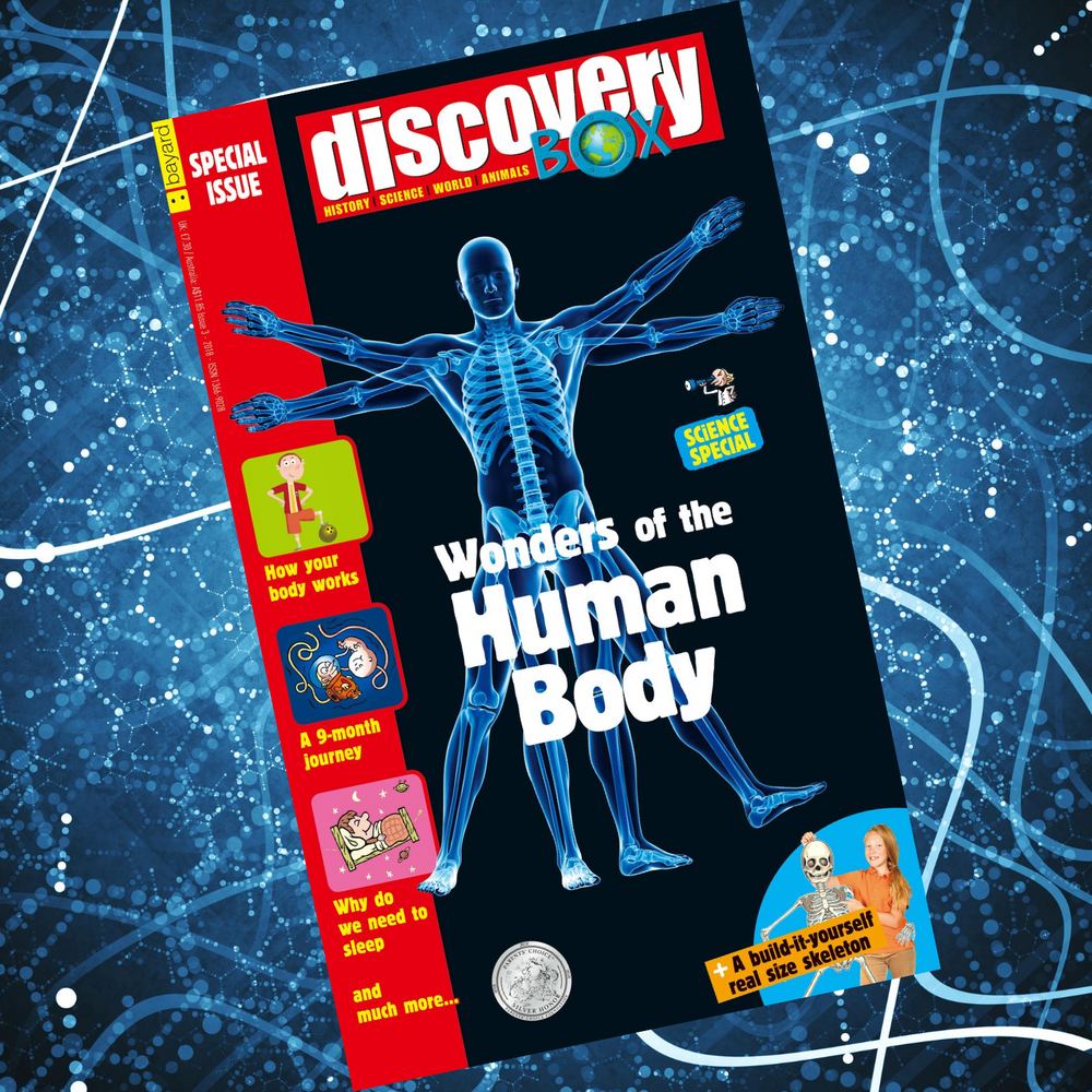 DiscoveryBox Special Edition: Wonders of the Human Body