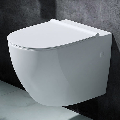 Aachen 502 Ceramic Wall Hung Toilet With Soft Close Seat (C65)
