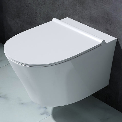 Aachen 501 Wall Hung Ceramic Toilet With Soft Close Toilet Seat (C64)