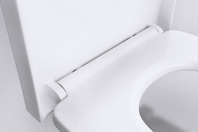 UF-1129 D-Shaped Soft Close Toilet Seat