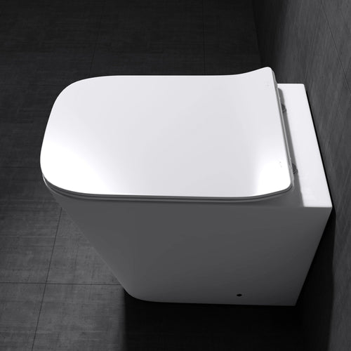 Aachen 3170 Back To Wall Toilet With Soft Close Seat (C47)