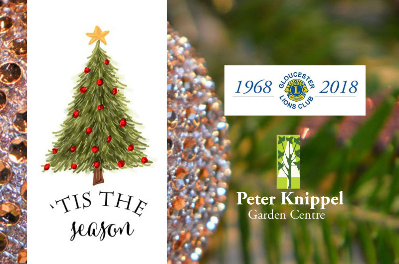 Lions Club Christmas Trees - a beautiful way to celebrate the season of giving!