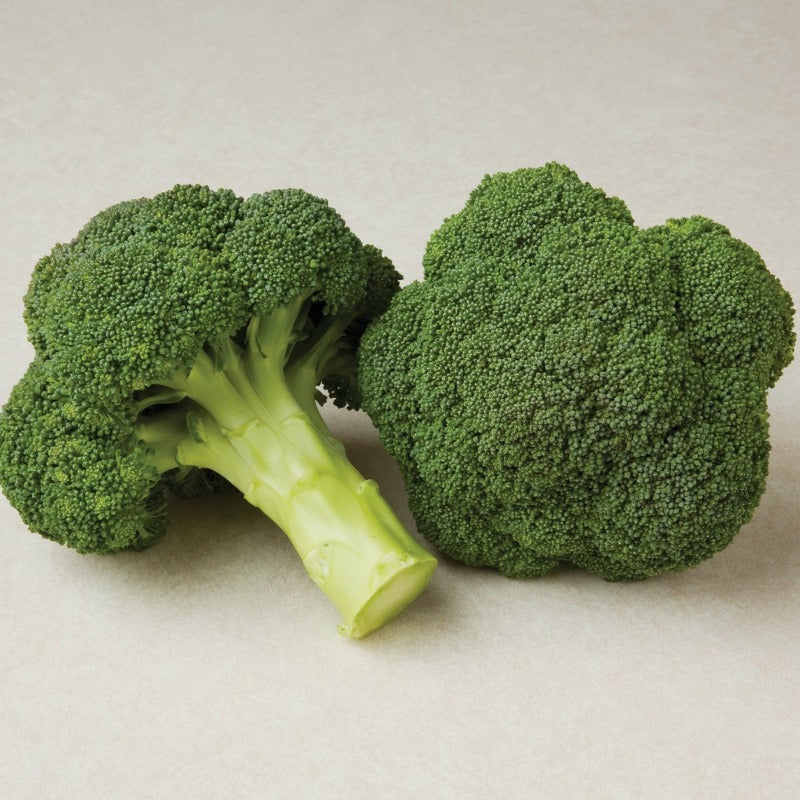 Broccoli - IN STORE PICK-UP ONLY