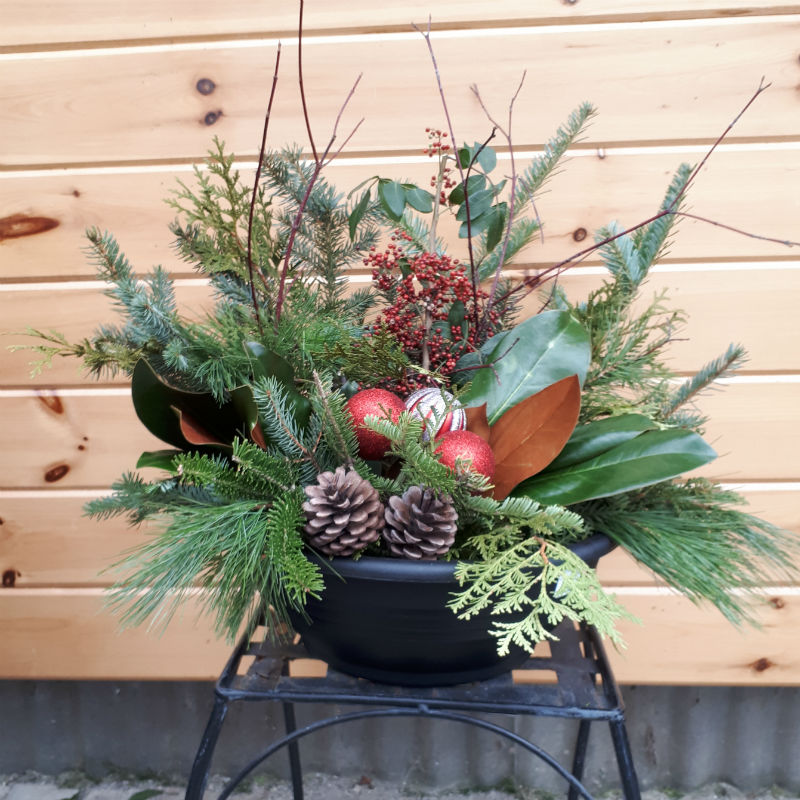 Festive Planter - Medium Round Pot