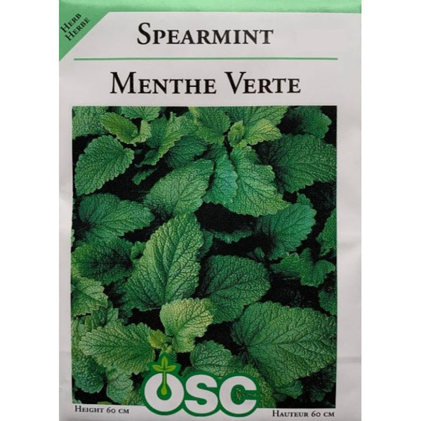 Herb Seeds- Spearmint