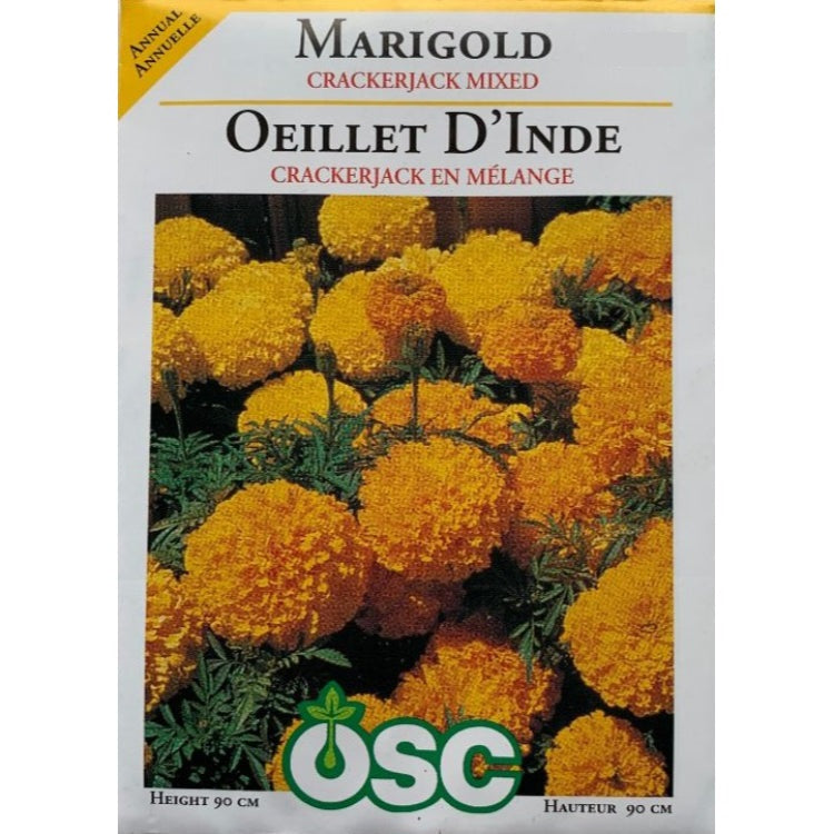 Marigold Seeds- Crackerjack Mixed