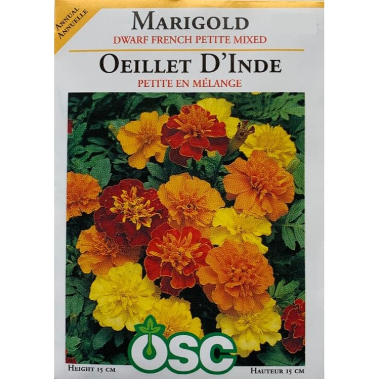 Marigold Seeds- Dwarf French Petite Mixed