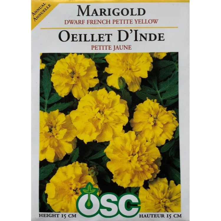 Marigold Seeds- Dwarf French Petite Yellow