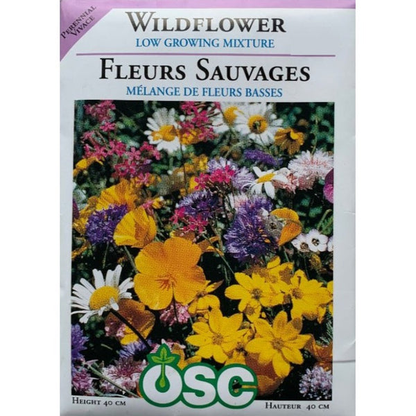 Wildflower Seeds- Low Growing Mixture
