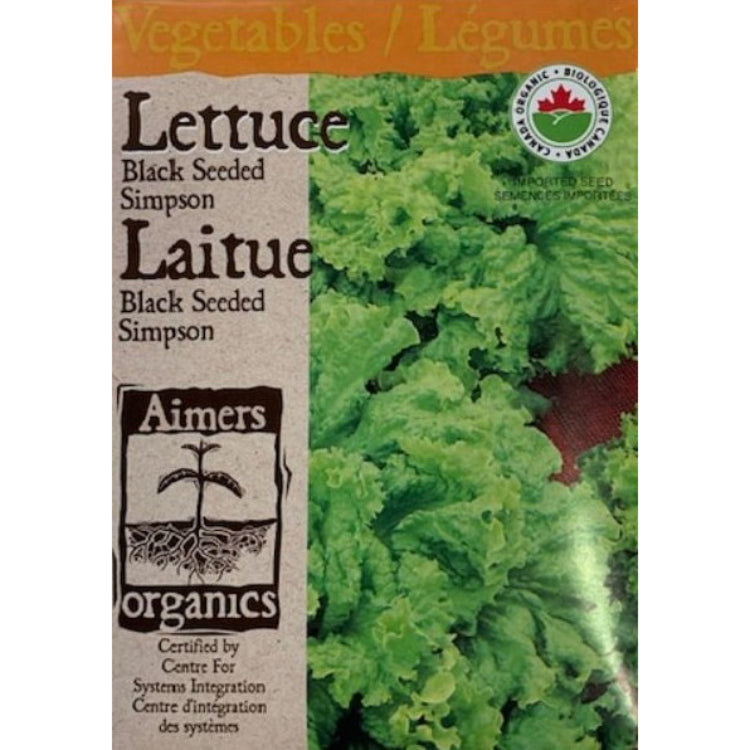 Organic Lettuce Seeds- Black Seeded Simpson