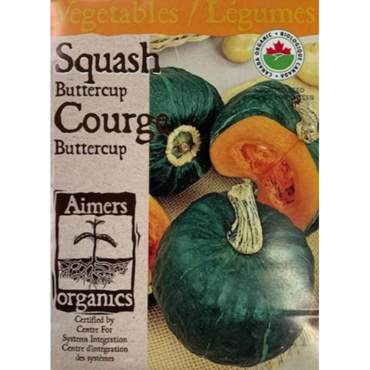 Organic Squash Seeds- Buttercup