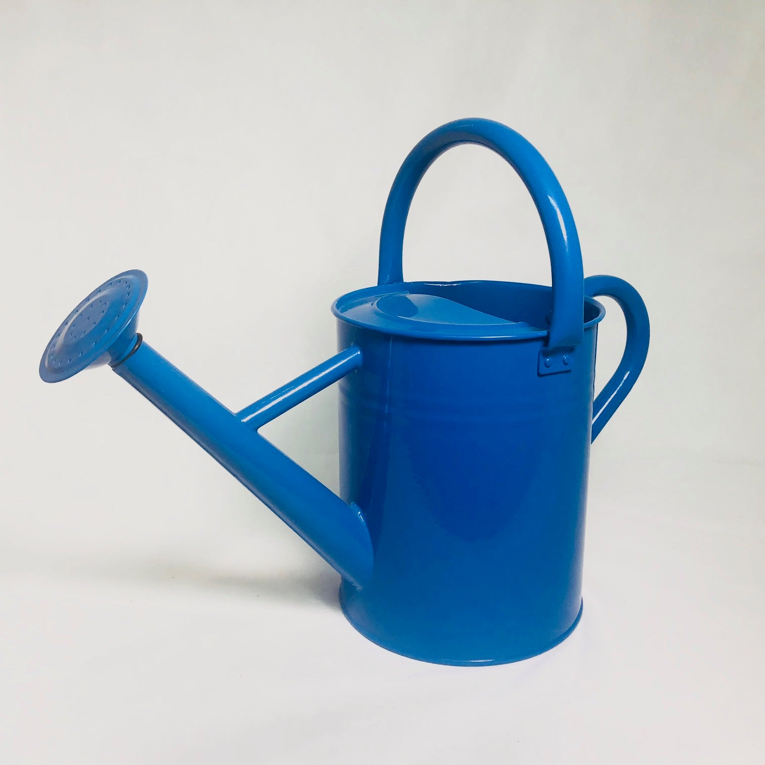 Blue Watering Can 1 G/3.8L