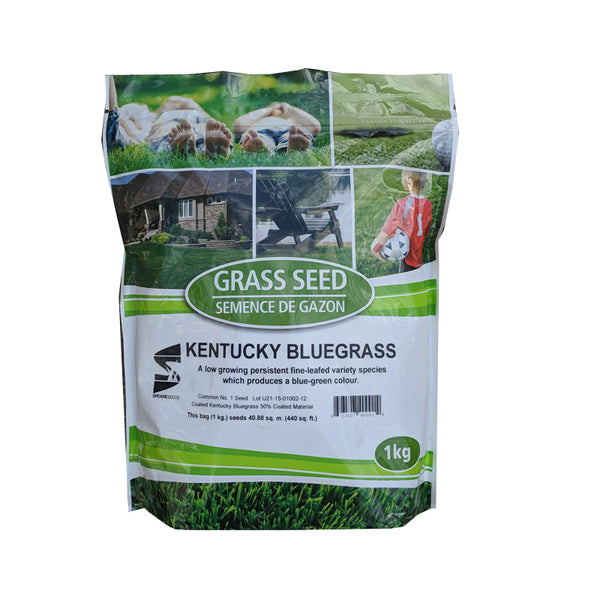 Speare Grass Seeds Kentucky Bluegrass 1kg